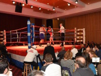 Boxing Show